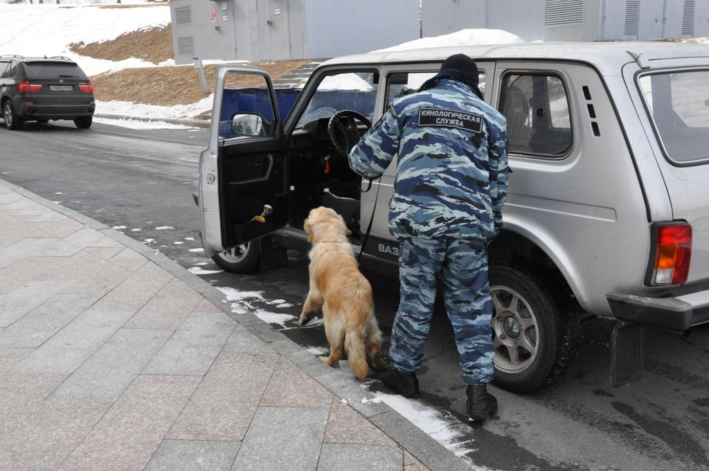 Работа кинологического подразделения УМВД РФ по ПК по выявлению ВВ