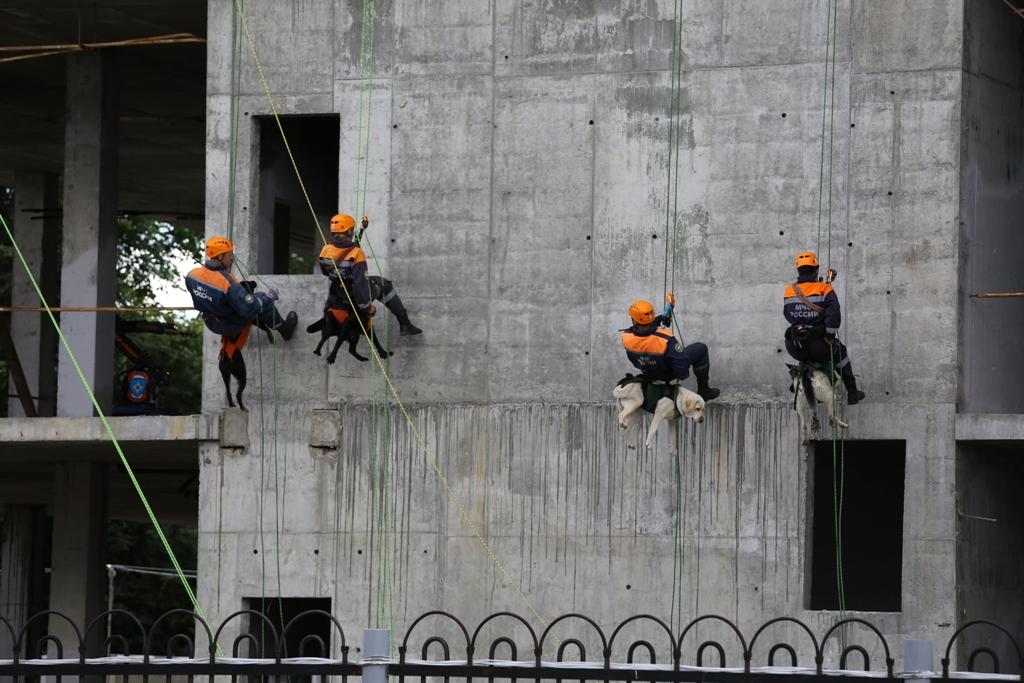 Совместное антитеррористическое учение компетентных органов государств - членов Шанхайской организации сотрудничества