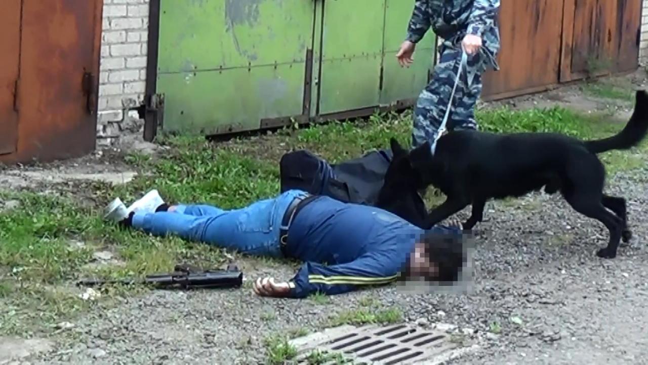 В подмосковных Химках пресечена  деятельность члена террористической организации, планировавшего совершение террористического акта
