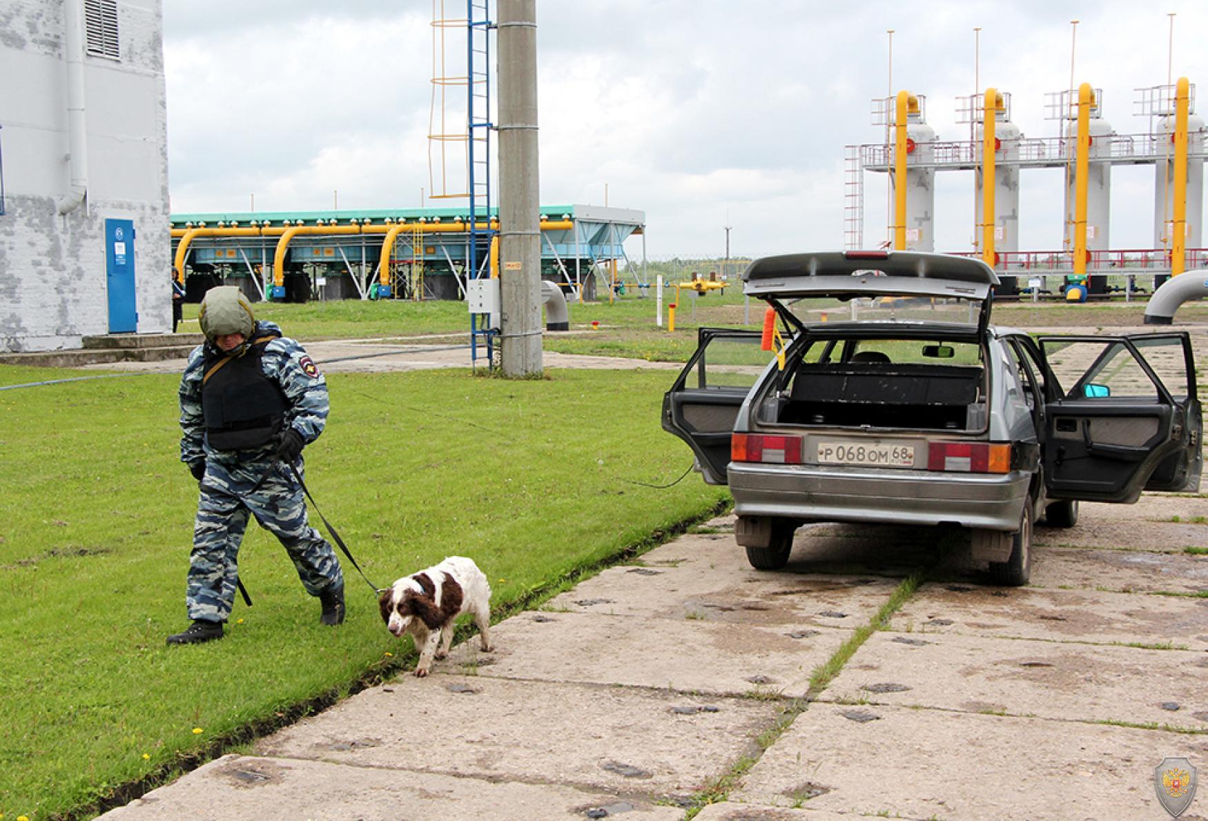 Обследование автомобиля «террористов» на наличие самодельного взрывного устройства