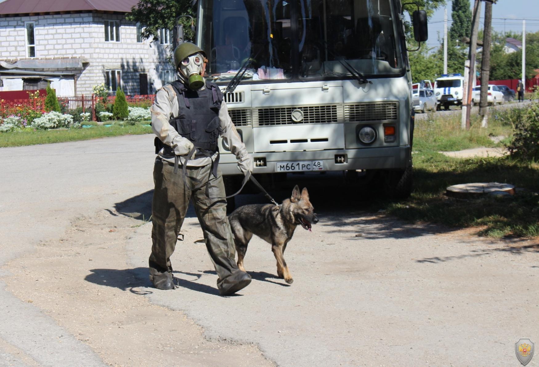 Работа инструктора-кинолога со служебной собаки на зараженном участке местности